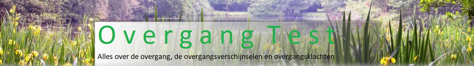 Overgang Test
